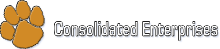 Consolidated Enterprises Logo